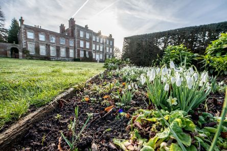 Snowdrop walks are a popular date at the start of the calendar of events for Gunby Hall and gardens. Photos: John Aron. ANL-200217-131352001