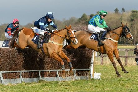 Racing at Brocklesby Park has become a popular staple in the point-to-point calendar Picture: Nico Morgan EMN-191202-084533002
