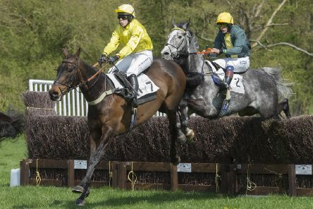 South Wold Hunt Point-to-Point action in 2018. Picture: Sarah Washbourn'www.yellowbellyphotos.com