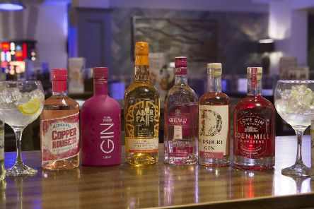 A selection of the gins on offer during the festival (February 14 to March 3) PHOTO: Supplied
