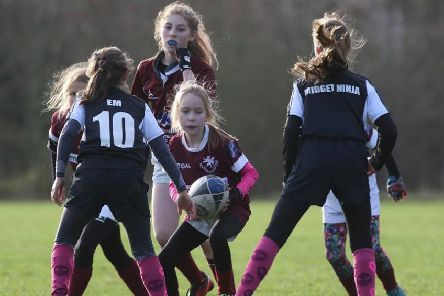 Melton RFC girls' section was launched last November EMN-190226-153917002