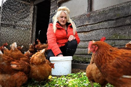 Old Gardens Animal Rescue Centre owner Irene Clarke with some of the chickens. Photo: Steve Robards SR1907836