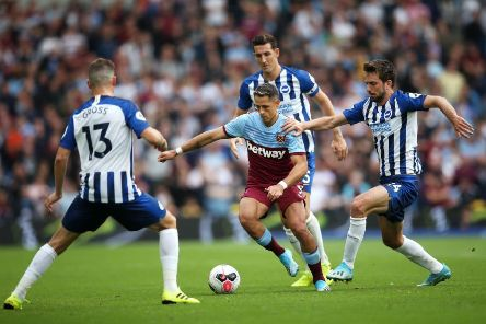 Davy Propper looks back to best for Brighton (Getty)