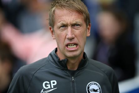 Graham Potter expects a big fight against his former club Southampton (Getty)
