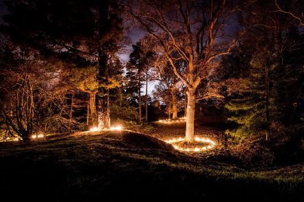 Wakehurst Place. Glow Wild 2015. Picture by Jim Holden