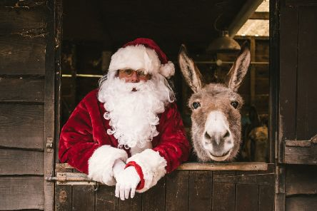 Father Christmas and donkey.