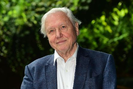 Host of Blue Planet II, Sir David Attenborough. Credit: Getty.