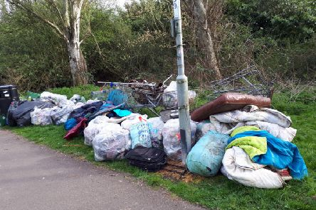 Rubbish which was collected. Photo: Harry Machin