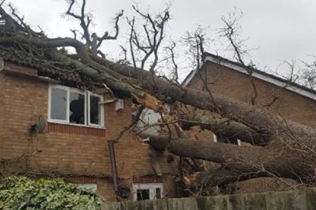 A large oak tree fell in strong winds and crashed onto a house in Bewbush, near Crawley. Picture: Crawley Fire Station/PA Wire