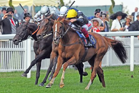 Frankie Dettori guides Stradivarius to another Ascot Gold Cup win - now it's likely to be next stop Goodwood / Picture by Malcolm Wells