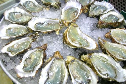 Oysters are known to 'absorb' nitrogen as well as feed on harmful algae