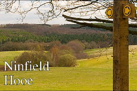 Ninfield & Hooe news