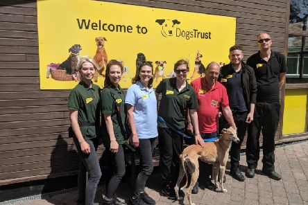 Part of the Dogs Trust Shoreham team: Ella Bowden-Williams, Sophie Lewis-Perry, Joanna May, Helen Fountain, Derek Davis, Chris Barnard, Ryan Hawkins, Cici the dog