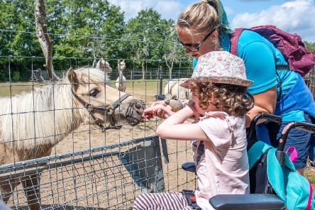 An Ashdown Centre outing to Aldingbourne Country Centre