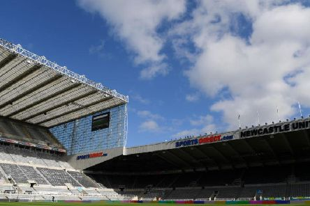 Brighton were at St James's Park this afternoon.