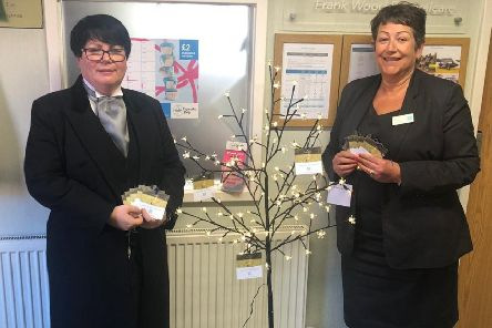 Tina Mellors and Sarah Dowsett with the  illuminated memory  tree. ANL-190526-072058001