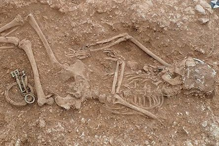One of the skeletons unearthed at the Anglo-Saxon burial site in Scremby. Photo: Sheffield University.