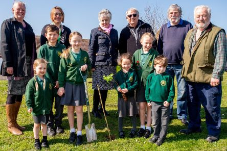 Heckington Parish Councillors joined pupils from Heckington St Andrew's Primary School to plant the 60 memorial trees to mark the end of the First World war and those from the village that died in it. EMN-190804-121541001