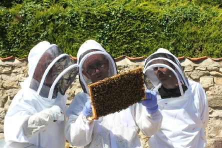 Looking for funding to create their own communal apiary - Sleaford Beekeepers. EMN-190810-090943001