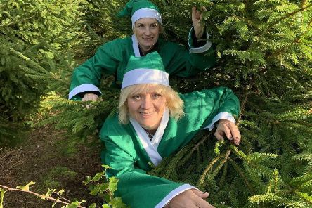 St Barnabas's Tree-cycling elves. EMN-190612-152411001