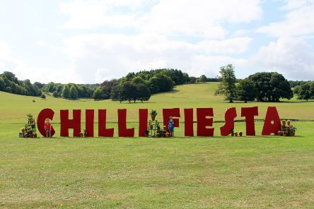 Chilli Fiesta West Dean has been cancelled on the Saturday