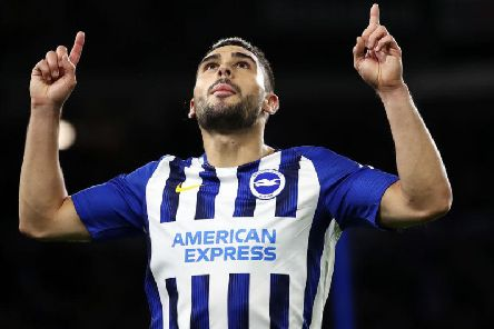 Brighton striker Neal Maupay scored his sixth Premier League goal against Wolves yesterday