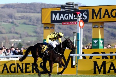 Al Boum Photo and Paul Townend pass the finish line to retain the Magners Gold Cup