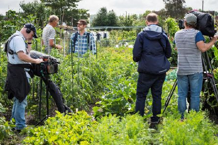 Filming in the allotments: Matt Baker and Ken Manning discuss tomatoes and modern day allotments