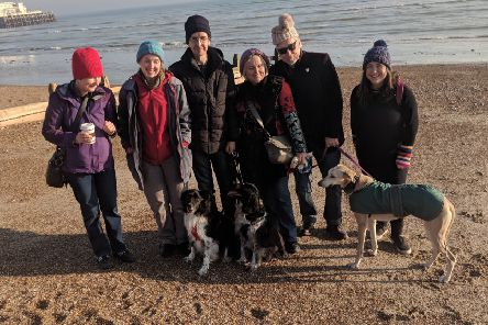 Canine Conundrums UK organised a dog walk on Worthing beach for Turning Tides' Woolly Hat Day