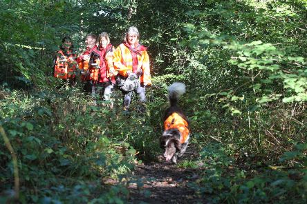 DM19103416a.jpg. Missing person search exercise with Search Dogs, Sussex. Photo by Derek Martin Photography. SUS-191019-191418008