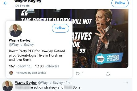 Brexit Party candidate for Crawley denies posting expletive-laden tweet