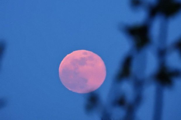 Pink moon magic over Hastings this Easter