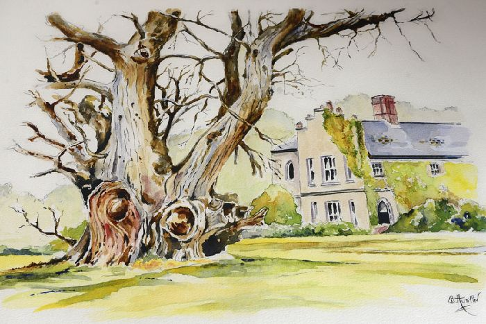 Painting immortalises the Scarva tree where King William rested