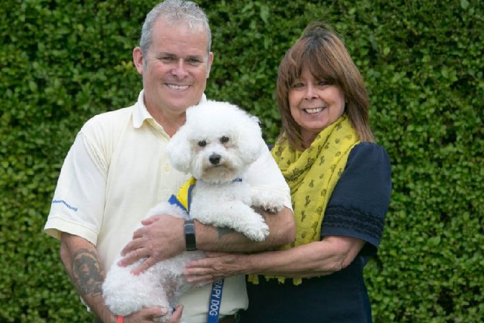 Amazing' Eastbourne dog nominated for Therapy Dog of the Year