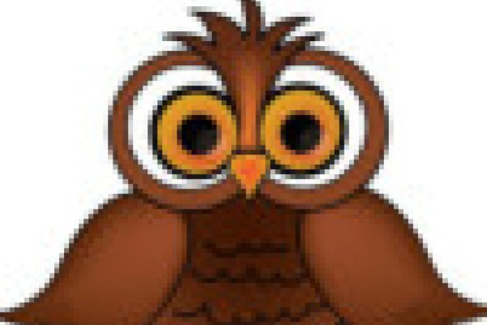 WISE OWL FRIDAY SELECTION - Belfast News Letter