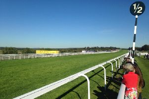 The lush turf at Goodwood