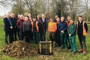 Corby Borough and Kettering Borough councillors together with officers from the new shared service team and members of the Friends of Coronation Park group plant new trees as part of the makeover