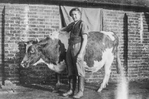 Emrys Nicholas, who was a cowman, pictured at Pitsham Farm before the Second World War started. The photo appeared on Emrys' grave in Venray during the anniversary celebration.