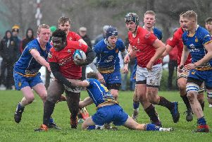Regent House prop Samuel Attipoe makes a break against Bangor Grammar