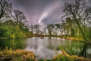Visitors can enjoy a guided walk to the ice house pond. Picture: David Dales.