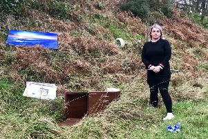Councillor Jill Macauley at the site of the latest  flytipping incident on the Kilkinamurry Road, Katesbridge