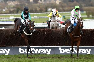 Altior and Nico de Boinville clear the last to win the Betway Queen Mother Champion Chase at Cheltenham. Photo: Michael Steele/Getty Images