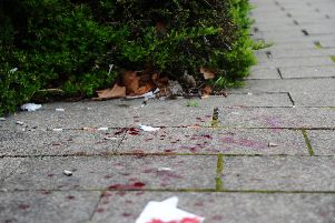 Blood trailed across the pavement running through Ravelin Park. Picture: Sarah Standing (210319-2639)