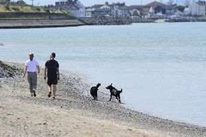 A couple and their dogs pictured at Holywood beach in Northern Ireland enjoying the warm weather in 2018. (Photo: Arthur Allison/Pacemaker)