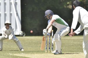 Cricket action from Castor.