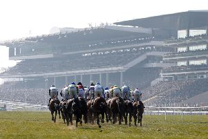 All roads are leading to Prestbury Park