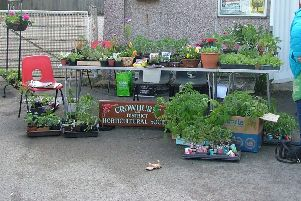 Crowhurst and District Horticultural Society's annual Plant Sale at the Village Hall on May 4, 2019. SUS-190605-131531001