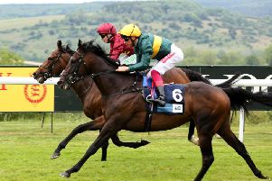 There are six races at Goodwood this evening / Picture by Sam Stephenson