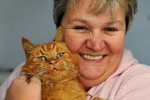 Cat Jasper was found in Yapton a year after going missing from Selsey, seen here with his owner Karen Ifould. Photo: Steve Robards SR03101902