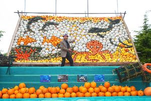 DM19101721a.jpg. Slindon pumpkin display. Installer Mark Ford. Photo by Derek Martin Photography. SUS-190710-171719008